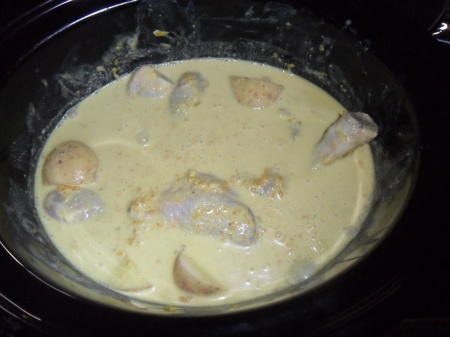 Not too appetizing looking before you switch the slow cooker on.